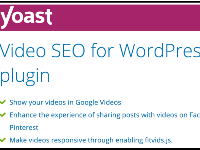 wordpress,wordpress plugin,yoast seo premium,Video SEO for WordPress,Video SEO Plugin